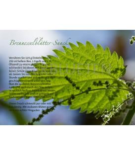 Brennessel-Snack