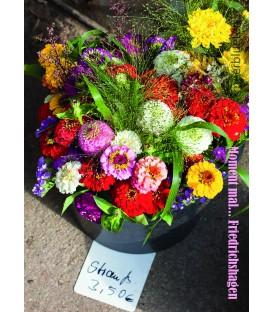 PK_a017 MM Blumenverkauf